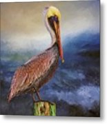 Pelican Seas Metal Print