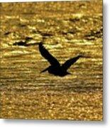 Pelican Silhouette - Golden Gulf Metal Print