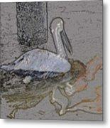 Pelican Swim IIi Color Pencil Metal Print