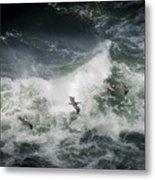 Pelicans And Surf Metal Print