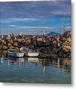 Pelicans At Eden Wharf Metal Print
