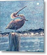 Pelikan At Night Santa Barbara Harbor Metal Print