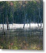 Pemigewasset Wilderness - White Mountains New Hampshire Usa Metal Print