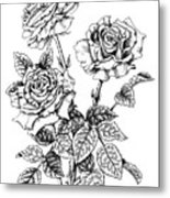 Pen And Ink Roses Metal Print