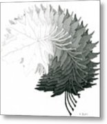 Pencil Drawing Of Maple Leaves Metal Print