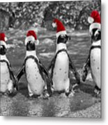 Penguins With Santa Claus Caps Metal Print