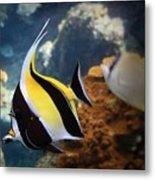 Pennant Coralfish Metal Print