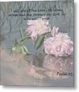 Peonies With Psalm 91.2 Metal Print