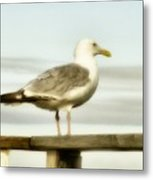 Perch By The Water Metal Print
