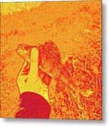 Perch Red Yellow Metal Print