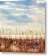 Perdido Painted  Metal Print