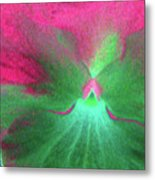 Perfectly Pansy 07 - Photopower Metal Print