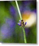 Perfectly Positioned Metal Print by Rebecca Cozart