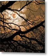 Perigee Moon In The Trees Metal Print