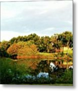 Perry Reflection Photo Metal Print