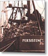 Persistence Metal Print