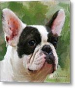Pet Bulldog Portrait Metal Print