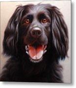 Pet Portrait Of A Black Labrador Metal Print