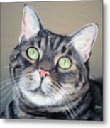 Pet Portrait Painting Commission Tiger Cat Metal Print