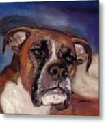 Pet Portraits Metal Print