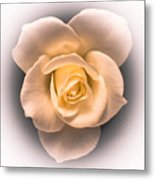 Petal Pleasure Metal Print