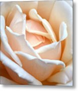 Petal Power Metal Print