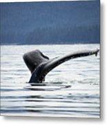 Petersburg Ak Whale Tale 5 Metal Print