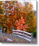 Petoskey Autumn Fence Metal Print