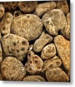 Petoskey Stones Vlll Metal Print