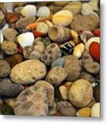 Petoskey Stones With Shells Ll Metal Print
