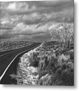 Petrified Forest 6 Metal Print