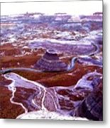 Petrified Forest Metal Print