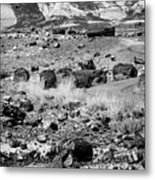 Petrified Forest National Park #2 Metal Print