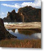 Pfeiffer Beach Landscape In Big Sur Metal Print
