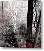 Phantasm In Wildwood Metal Print