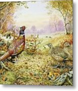 Pheasants In Woodland Metal Print