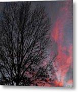 Phoenix Cloud Rising Metal Print
