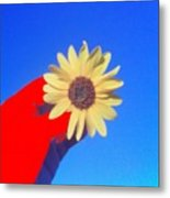 Phone Cam 491 Sun Flower Metal Print