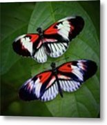 Piano Key Butterfly's Metal Print