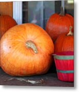 Pick A Pumpkin Metal Print