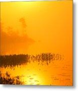 Pickerel Sunrise Metal Print