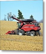 Picking Corn Metal Print