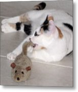 Pico And Toy Mouse Metal Print