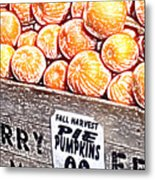 Pie Pumpkins For Sale Metal Print