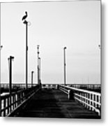 Pier And Pelican Metal Print