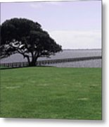 Pier And Tree By The River Metal Print