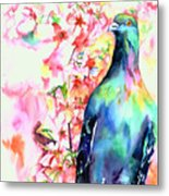 Pigeon Eye Metal Print