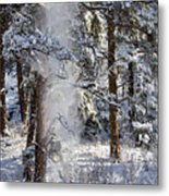 Pike National Forest Snowstorm Metal Print