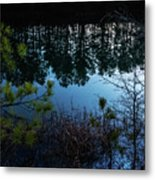 Pine Barren Reflections Metal Print