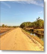 Pine Barrens Of New Jersey Cranberry Harvest Bogs  Metal Print